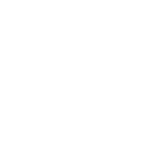 Flood Safety icon